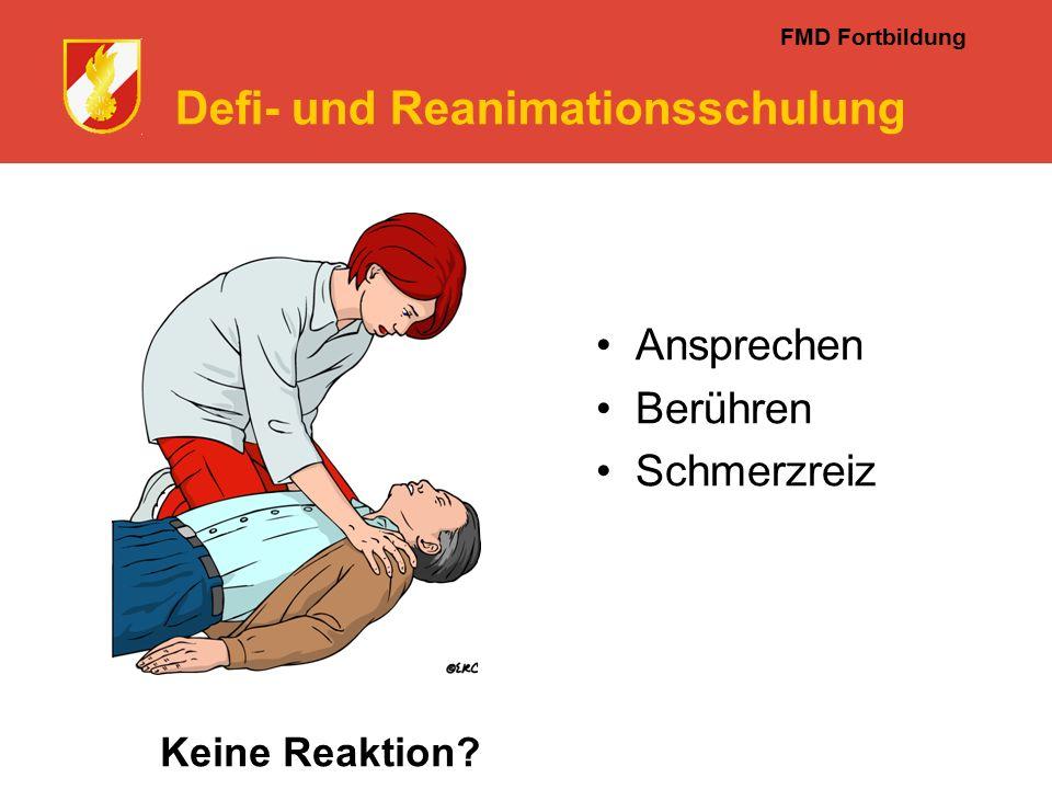 FMD Fortbildung Defi- und Reanimationsschulung Keine Reaktion Ansprechen Berühren Schmerzreiz