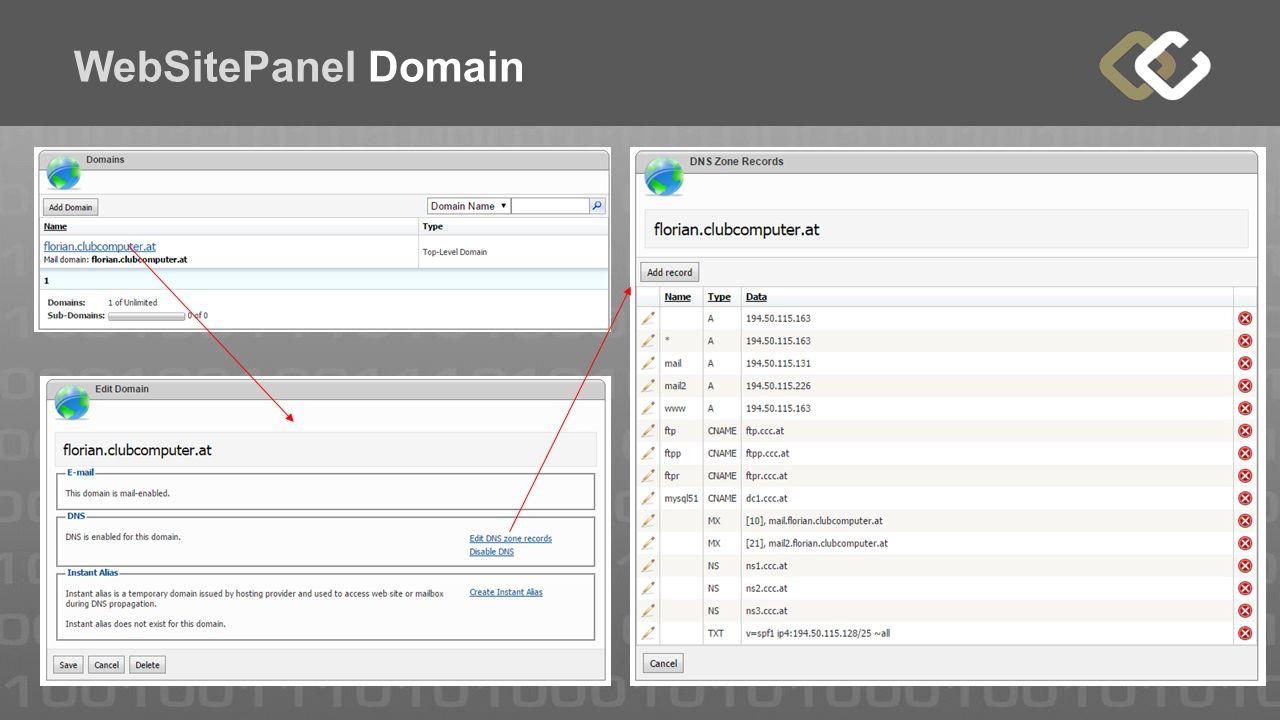 WebSitePanel Domain