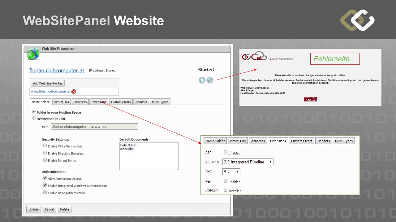 WebSitePanel Website Fehlerseite