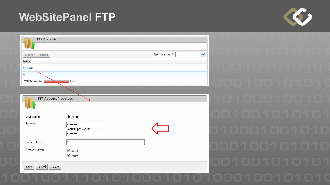 WebSitePanel FTP