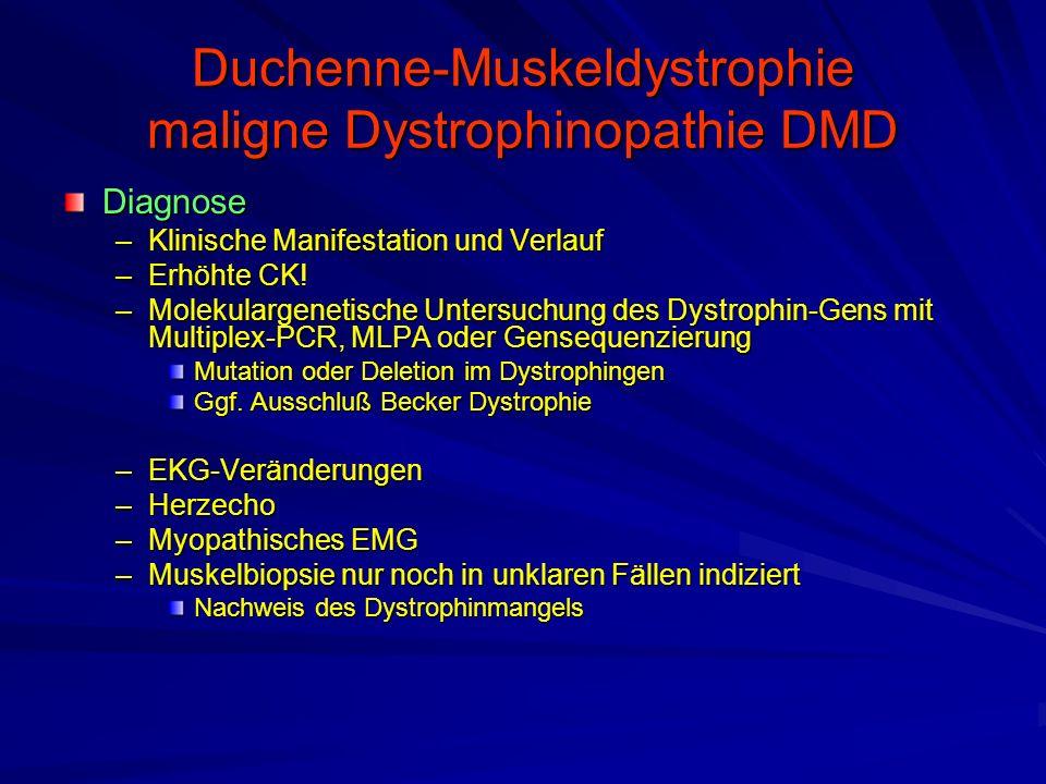 Duchenne-Muskeldystrophie maligne Dystrophinopathie DMD Diagnose –Klinische Manifestation und Verlauf –Erhöhte CK.