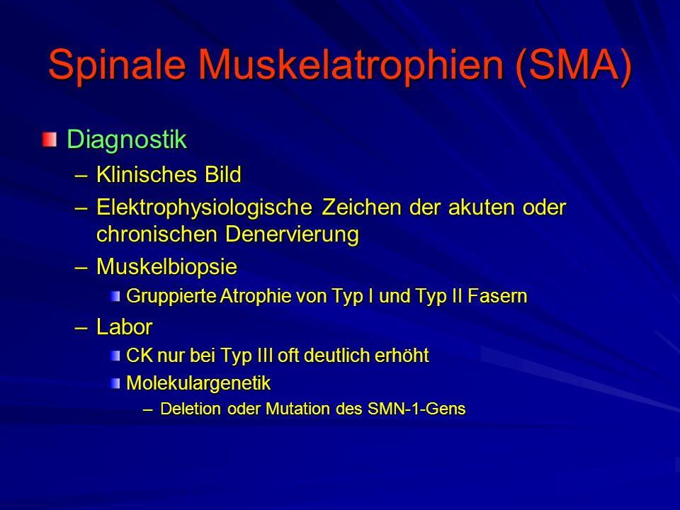 Spinale Muskelatrophien (SMA) Diagnostik –Klinisches Bild –Elektrophysiologische Zeichen der akuten oder chronischen Denervierung –Muskelbiopsie Gruppierte Atrophie von Typ I und Typ II Fasern –Labor CK nur bei Typ III oft deutlich erhöht Molekulargenetik –Deletion oder Mutation des SMN-1-Gens