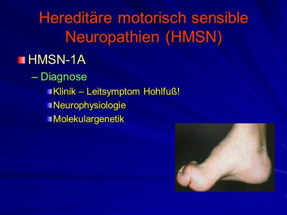 Hereditäre motorisch sensible Neuropathien (HMSN) HMSN-1A –Diagnose Klinik – Leitsymptom Hohlfuß.