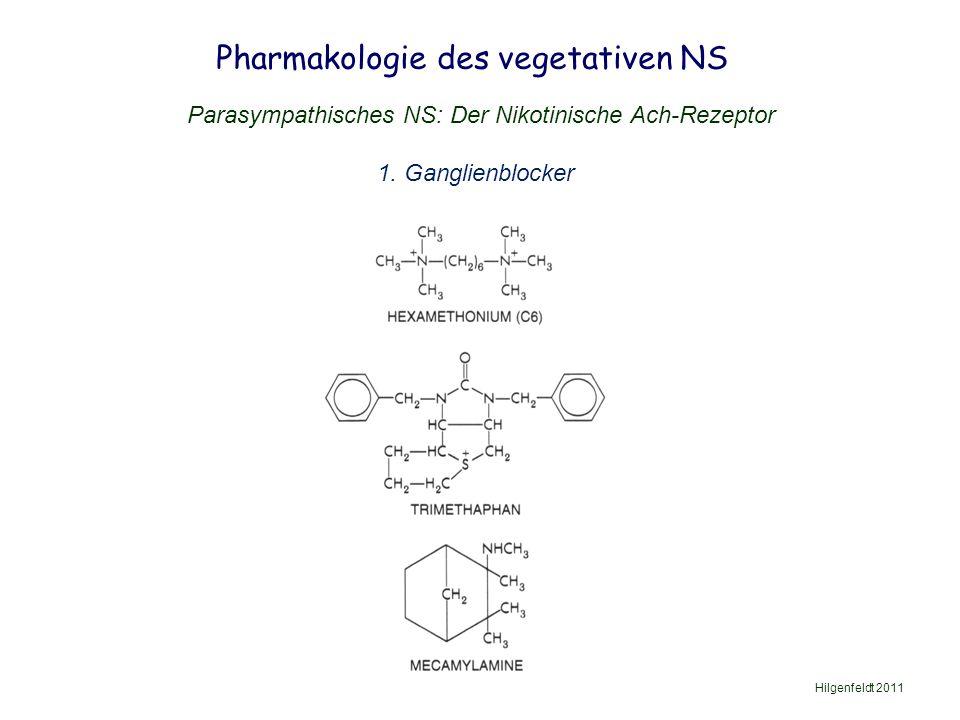 Pharmakologie des vegetativen NS Hilgenfeldt 2011 Parasympathisches NS: Der Nikotinische Ach-Rezeptor 1.