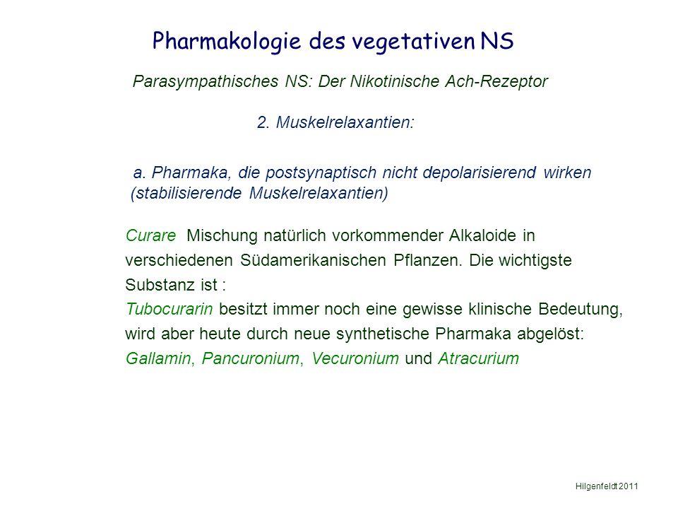 Pharmakologie des vegetativen NS Hilgenfeldt 2011 Parasympathisches NS: Der Nikotinische Ach-Rezeptor 2.