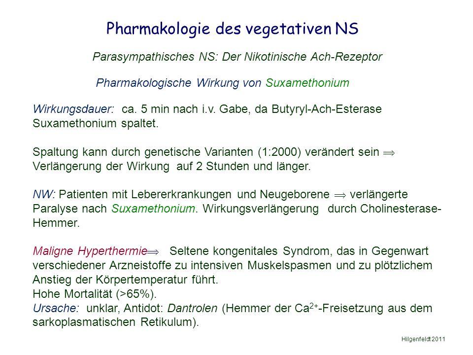 Pharmakologie des vegetativen NS Hilgenfeldt 2011 Parasympathisches NS: Der Nikotinische Ach-Rezeptor Pharmakologische Wirkung von Suxamethonium Wirkungsdauer: ca.