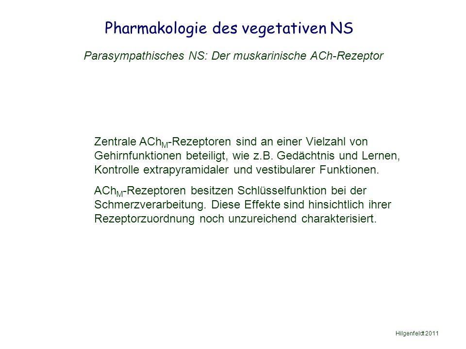 Pharmakologie des vegetativen NS Hilgenfeldt 2011 Parasympathisches NS: Der muskarinische ACh-Rezeptor Zentrale ACh M -Rezeptoren sind an einer Vielzahl von Gehirnfunktionen beteiligt, wie z.B.