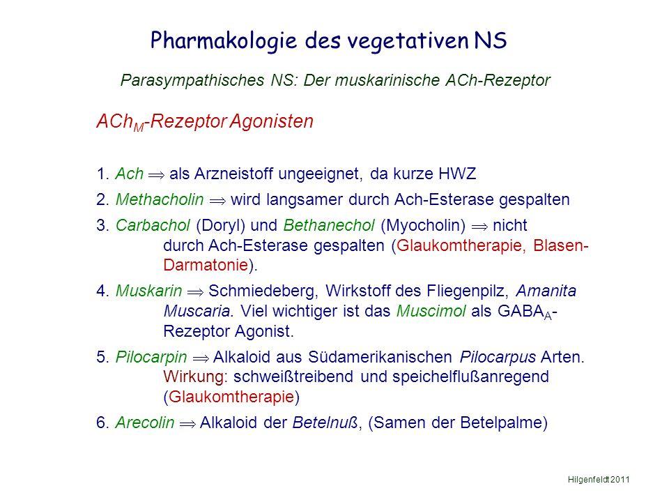 Pharmakologie des vegetativen NS Hilgenfeldt 2011 Parasympathisches NS: Der muskarinische ACh-Rezeptor ACh M -Rezeptor Agonisten 1.