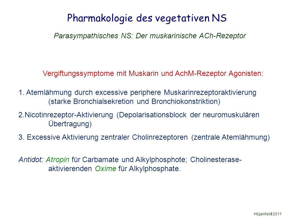 Pharmakologie des vegetativen NS Hilgenfeldt 2011 Parasympathisches NS: Der muskarinische ACh-Rezeptor Vergiftungssymptome mit Muskarin und AchM-Rezeptor Agonisten: 1.