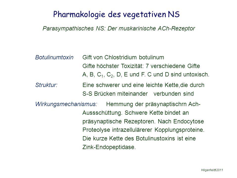 Pharmakologie des vegetativen NS Hilgenfeldt 2011 Parasympathisches NS: Der muskarinische ACh-Rezeptor BotulinumtoxinGift von Chlostridium botulinum Gifte höchster Toxizität: 7 verschiedene Gifte A, B, C 1, C 2, D, E und F.