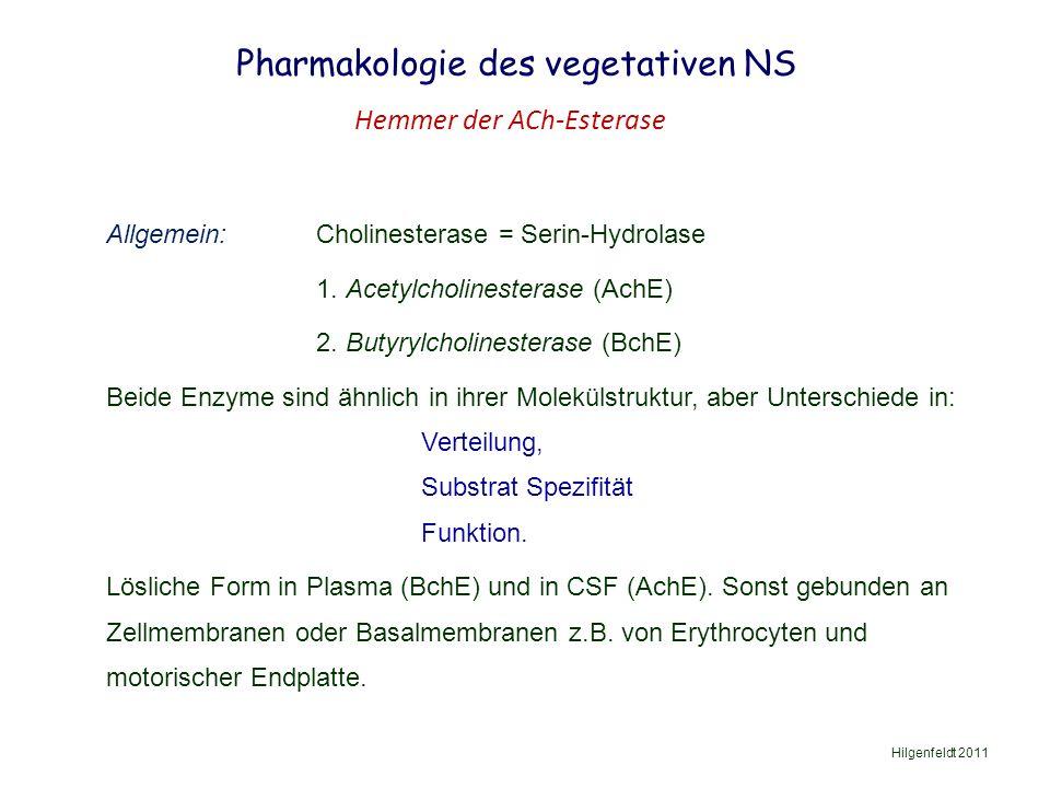 Pharmakologie des vegetativen NS Hilgenfeldt 2011 Hemmer der ACh-Esterase Allgemein: Cholinesterase = Serin-Hydrolase 1.