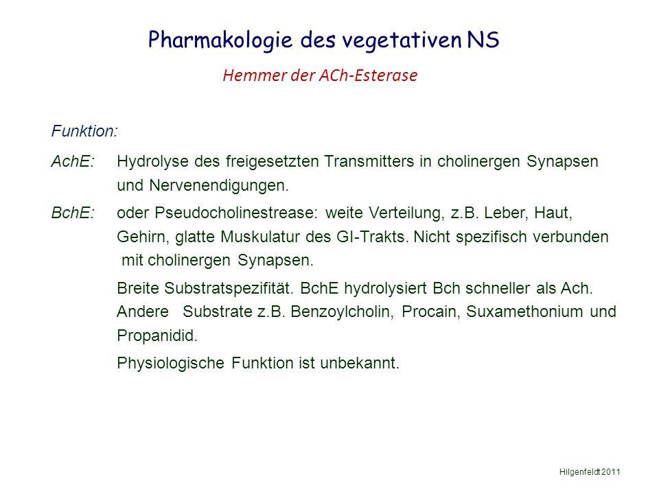 Pharmakologie des vegetativen NS Hilgenfeldt 2011 Hemmer der ACh-Esterase Funktion: AchE: Hydrolyse des freigesetzten Transmitters in cholinergen Synapsen und Nervenendigungen.