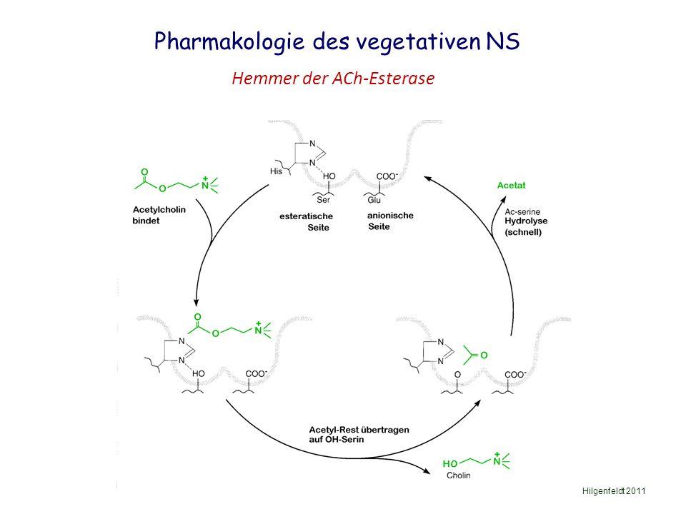 Pharmakologie des vegetativen NS Hilgenfeldt 2011 Hemmer der ACh-Esterase