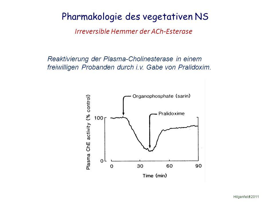 Pharmakologie des vegetativen NS Hilgenfeldt 2011 Irreversible Hemmer der ACh-Esterase Reaktivierung der Plasma-Cholinesterase in einem freiwilligen Probanden durch i.v.