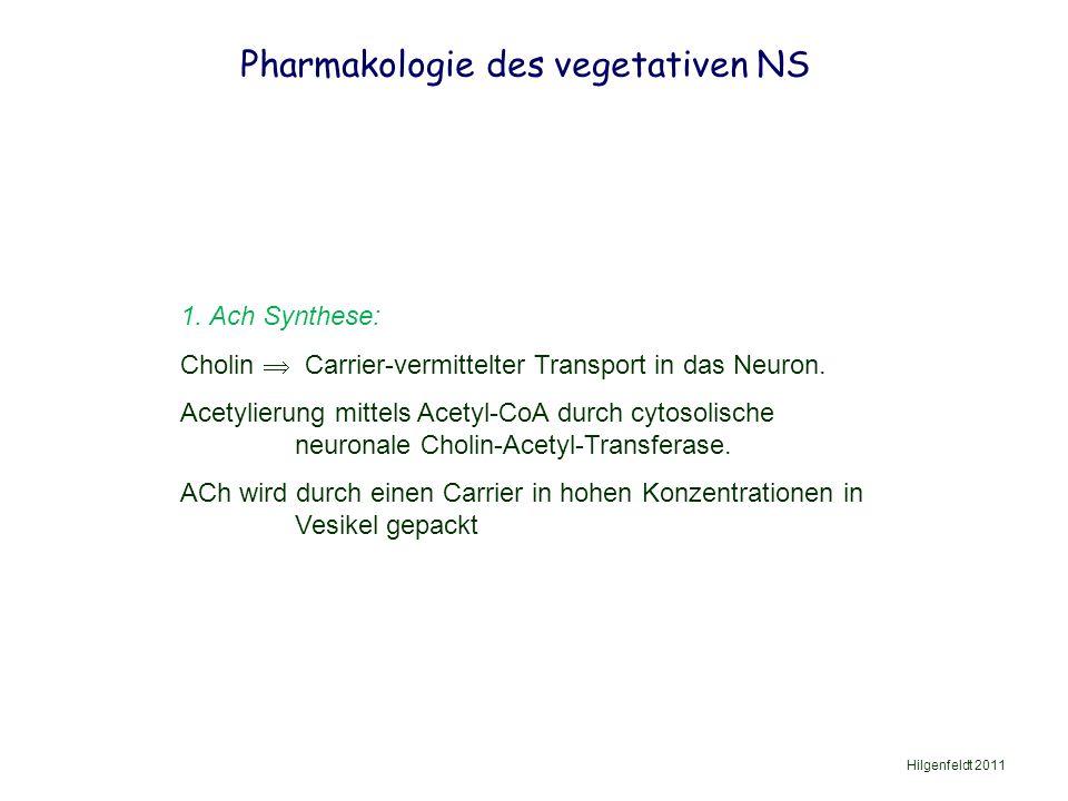 Pharmakologie des vegetativen NS Hilgenfeldt 2011 1.