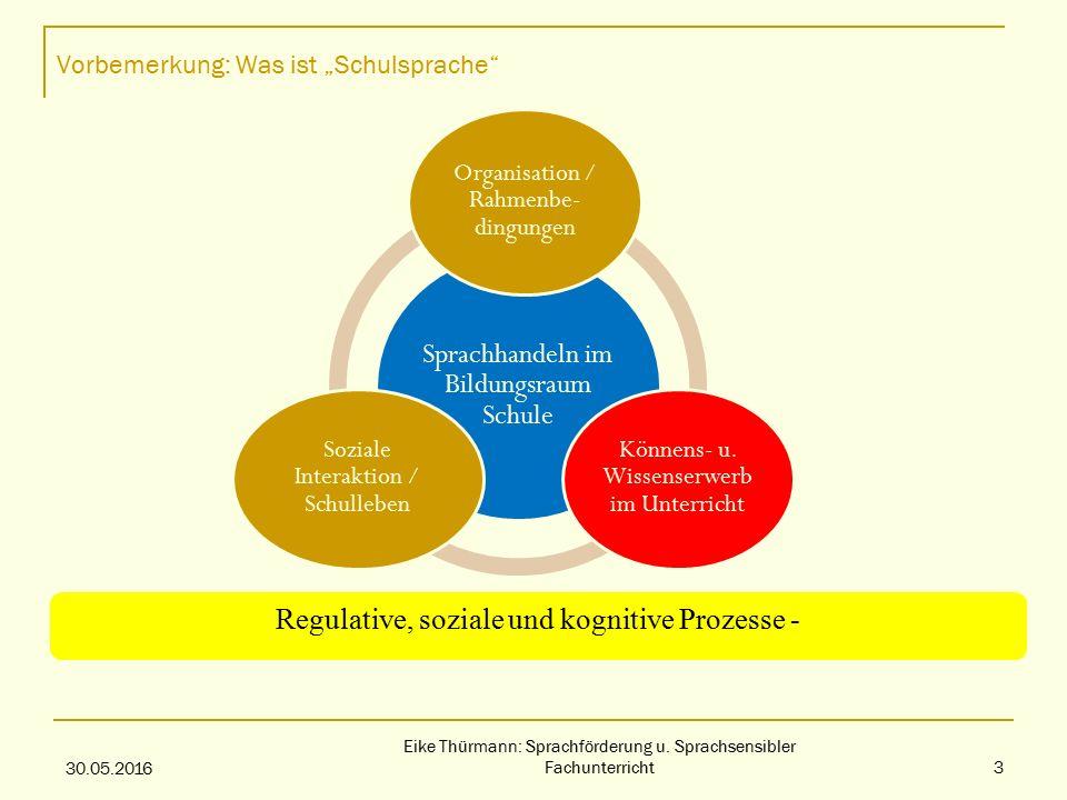 """Vorbemerkung: Was ist """"Schulsprache Sprachhandeln im Bildungsraum Schule Organisation / Rahmenbe- dingungen Könnens- u."""