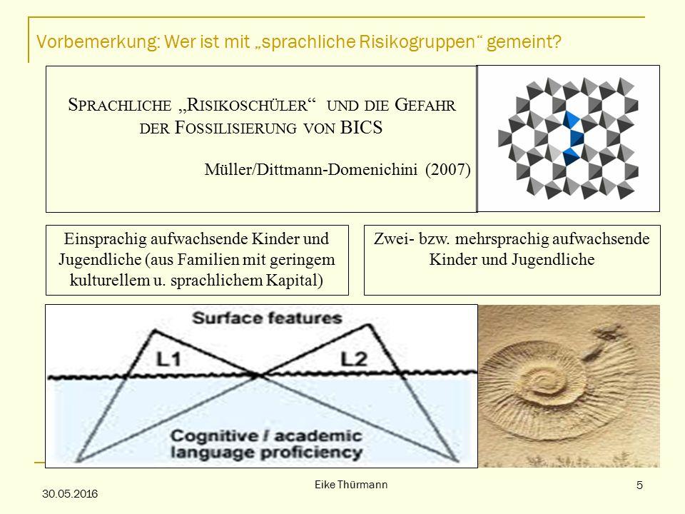 """Vorbemerkung: Wer ist mit """"sprachliche Risikogruppen gemeint."""