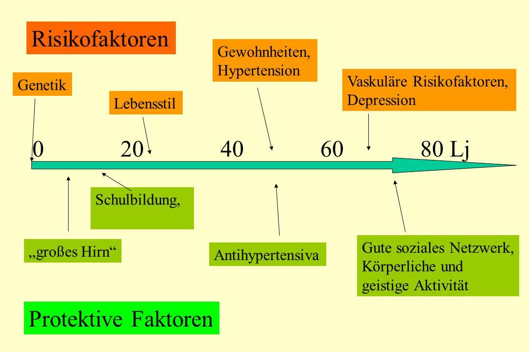 """Genetik 0 20 40 60 80 Lj Risikofaktoren Protektive Faktoren Schulbildung, Lebensstil Gewohnheiten, Hypertension Vaskuläre Risikofaktoren, Depression Antihypertensiva Gute soziales Netzwerk, Körperliche und geistige Aktivität """"großes Hirn"""