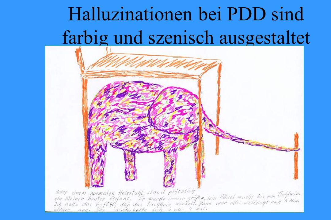 Halluzinationen bei PDD sind farbig und szenisch ausgestaltet