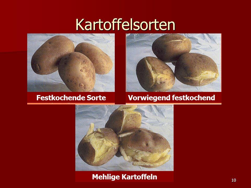 10 Kartoffelsorten Festkochende SorteVorwiegend festkochend Mehlige Kartoffeln