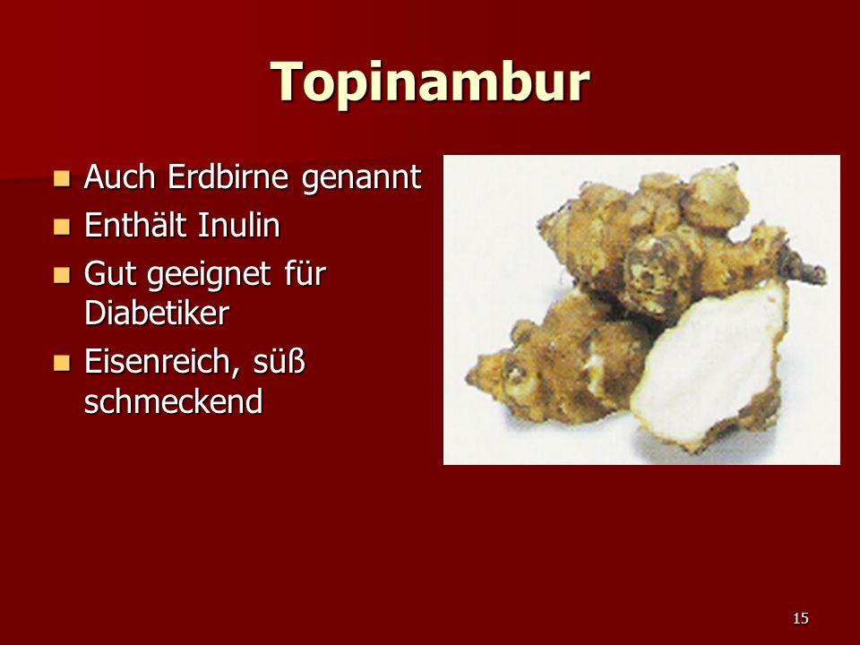 15 Topinambur Auch Erdbirne genannt Auch Erdbirne genannt Enthält Inulin Enthält Inulin Gut geeignet für Diabetiker Gut geeignet für Diabetiker Eisenreich, süß schmeckend Eisenreich, süß schmeckend