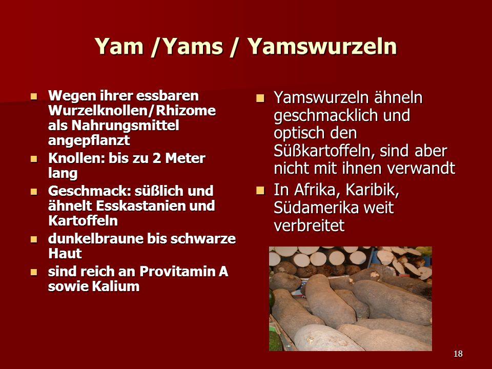 18 Yam /Yams / Yamswurzeln Wegen ihrer essbaren Wurzelknollen/Rhizome als Nahrungsmittel angepflanzt Wegen ihrer essbaren Wurzelknollen/Rhizome als Nahrungsmittel angepflanzt Knollen: bis zu 2 Meter lang Knollen: bis zu 2 Meter lang Geschmack: süßlich und ähnelt Esskastanien und Kartoffeln Geschmack: süßlich und ähnelt Esskastanien und Kartoffeln dunkelbraune bis schwarze Haut dunkelbraune bis schwarze Haut sind reich an Provitamin A sowie Kalium sind reich an Provitamin A sowie Kalium Yamswurzeln ähneln geschmacklich und optisch den Süßkartoffeln, sind aber nicht mit ihnen verwandt Yamswurzeln ähneln geschmacklich und optisch den Süßkartoffeln, sind aber nicht mit ihnen verwandt In Afrika, Karibik, Südamerika weit verbreitet In Afrika, Karibik, Südamerika weit verbreitet