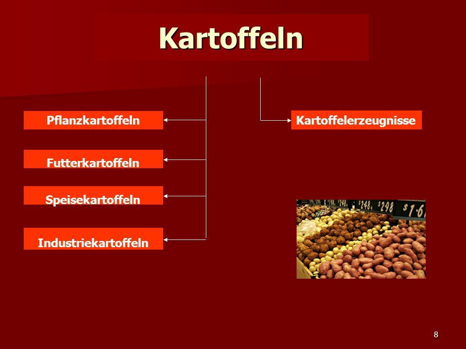 8 Kartoffeln Pflanzkartoffeln Futterkartoffeln Speisekartoffeln Industriekartoffeln Kartoffelerzeugnisse