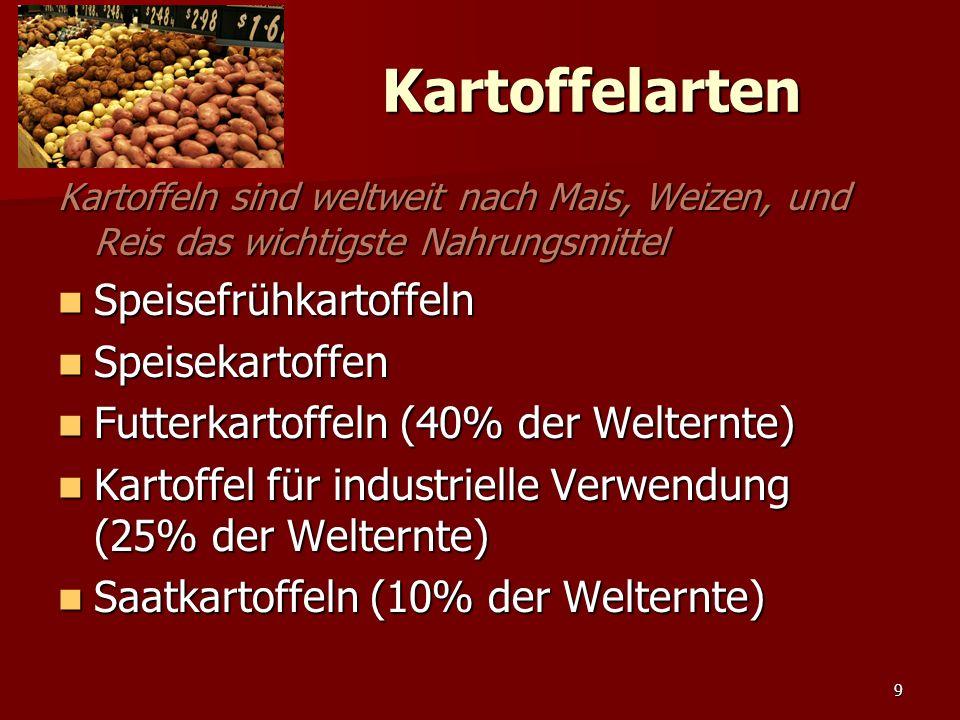 9 Kartoffelarten Kartoffeln sind weltweit nach Mais, Weizen, und Reis das wichtigste Nahrungsmittel Speisefrühkartoffeln Speisefrühkartoffeln Speisekartoffen Speisekartoffen Futterkartoffeln (40% der Welternte) Futterkartoffeln (40% der Welternte) Kartoffel für industrielle Verwendung (25% der Welternte) Kartoffel für industrielle Verwendung (25% der Welternte) Saatkartoffeln (10% der Welternte) Saatkartoffeln (10% der Welternte)