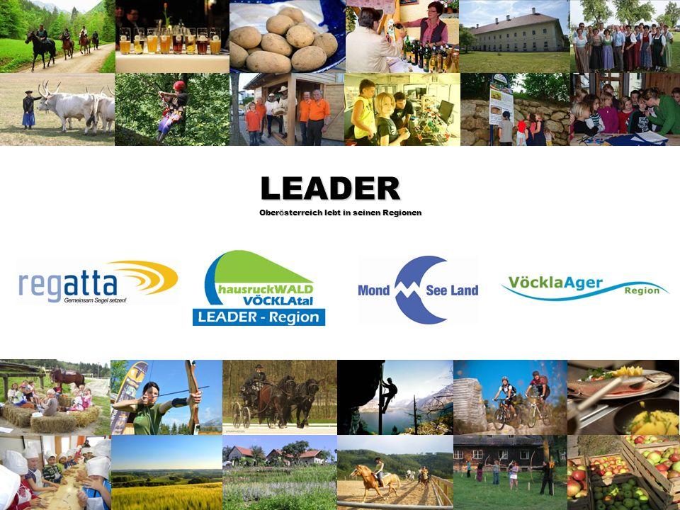Abteilung Land- und Forstwirtschaft Leader 2007-2013 im Bezirk Vöcklabruck Gemeinsame Erfolgsbilanz der Leader Regionen: Attersee-Attergau (REGATTA) Mondseeland Hausruckwald-Vöcklatal Vöckla-Ager Anzahl der Projekte: 212 Genehmigte Projektkosten:28.737.939 € Genehmigte Förderung:10.957.878 € Die von den Gemeinden geleisteten Beiträge brachten ein Vielfaches an Fördermitteln und Wertschöpfung in die Region: 1 € Mitgliedsbeitrag 26,15 € Investitionen in der Region 1 € Mitgliedsbeitrag 9,90 € Förderungen für die Region Gesicherte Arbeitsplätze:321 Geschaffene Arbeitsplätze: 72 Stand 11.07.2013