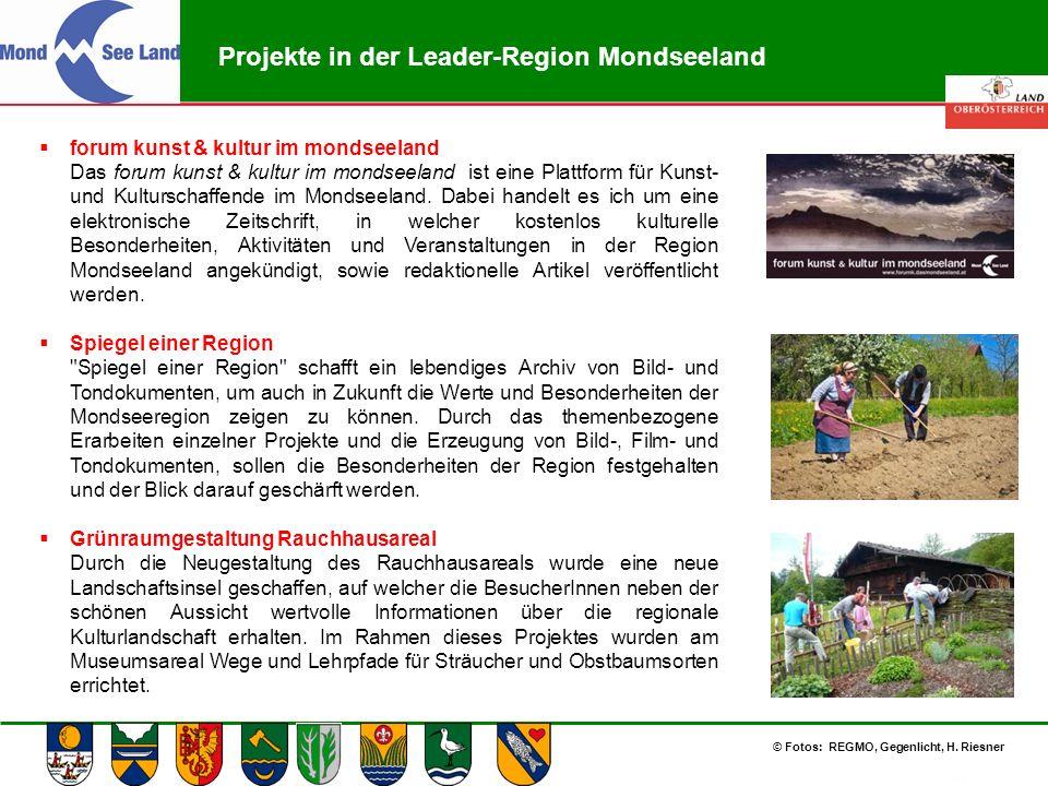 Abteilung Land- und Forstwirtschaft Projekte in der Leader-Region Mondseeland  forum kunst & kultur im mondseeland Das forum kunst & kultur im mondse