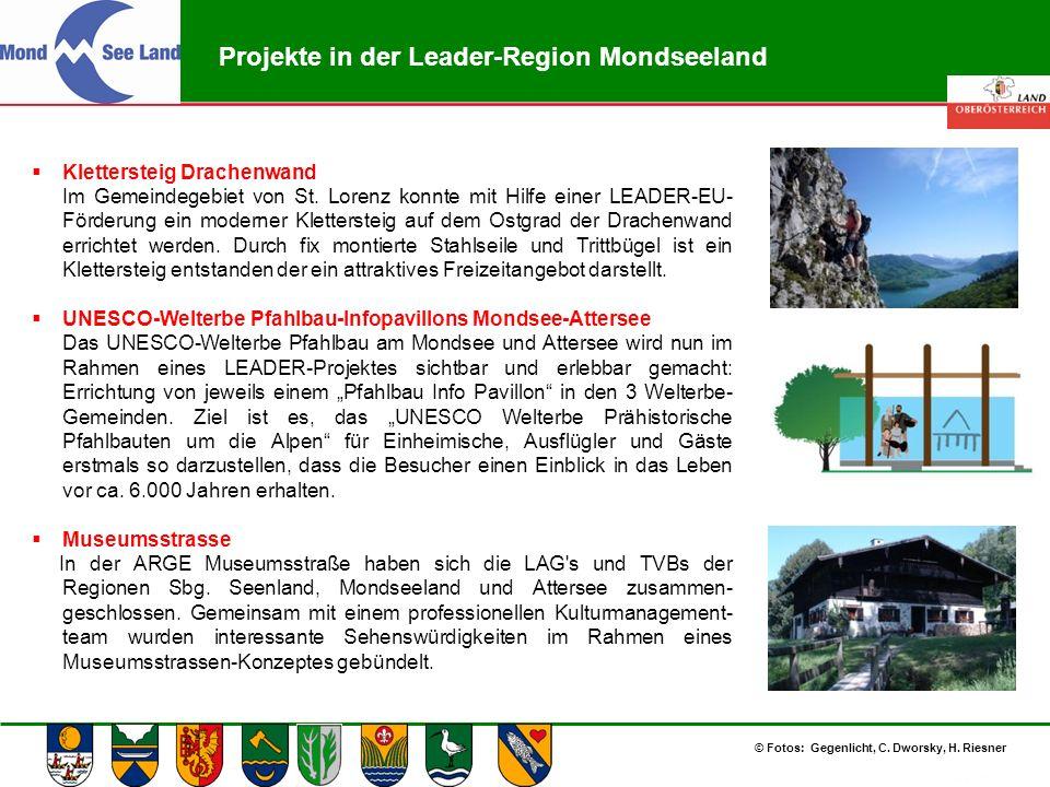 Abteilung Land- und Forstwirtschaft Projekte in der Leader-Region Mondseeland  Klettersteig Drachenwand Im Gemeindegebiet von St. Lorenz konnte mit H