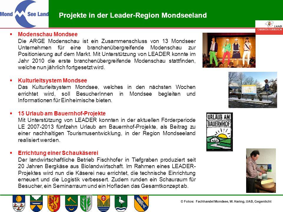 Abteilung Land- und Forstwirtschaft Projekte in der Leader-Region Mondseeland  Modenschau Mondsee Die ARGE Modenschau ist ein Zusammenschluss von 13
