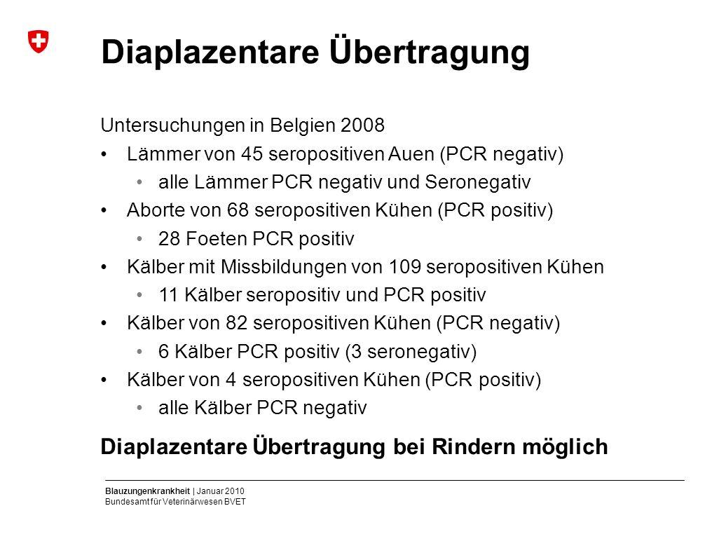Blauzungenkrankheit | Januar 2010 Bundesamt für Veterinärwesen BVET Diaplazentare Übertragung Untersuchungen in Belgien 2008 Lämmer von 45 seropositiven Auen (PCR negativ) alle Lämmer PCR negativ und Seronegativ Aborte von 68 seropositiven Kühen (PCR positiv) 28 Foeten PCR positiv Kälber mit Missbildungen von 109 seropositiven Kühen 11 Kälber seropositiv und PCR positiv Kälber von 82 seropositiven Kühen (PCR negativ) 6 Kälber PCR positiv (3 seronegativ) Kälber von 4 seropositiven Kühen (PCR positiv) alle Kälber PCR negativ Diaplazentare Übertragung bei Rindern möglich