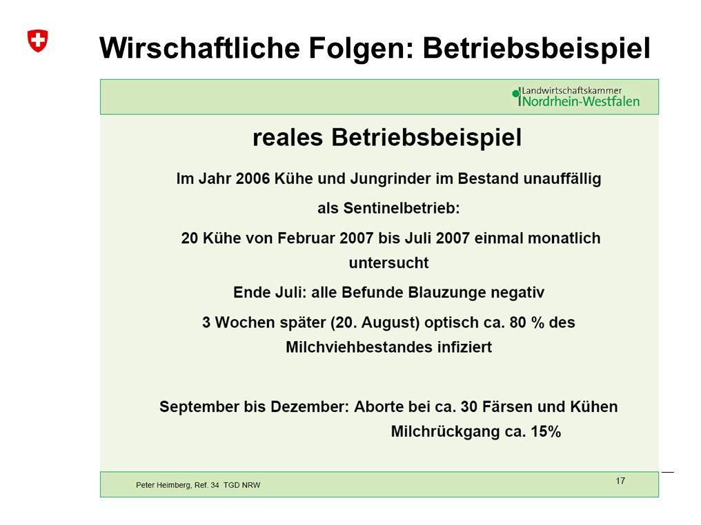 Blauzungenkrankheit | Januar 2010 Bundesamt für Veterinärwesen BVET Wirschaftliche Folgen: Betriebsbeispiel