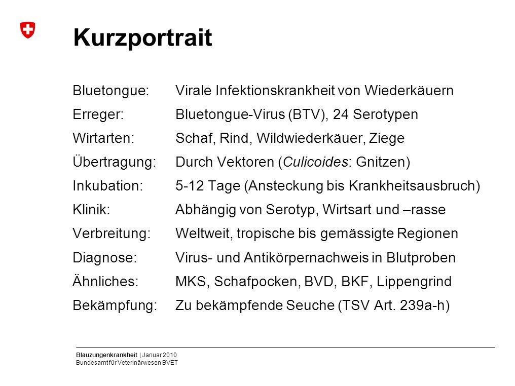 Blauzungenkrankheit | Januar 2010 Bundesamt für Veterinärwesen BVET Kurzportrait Bluetongue:Virale Infektionskrankheit von Wiederkäuern Erreger: Bluet