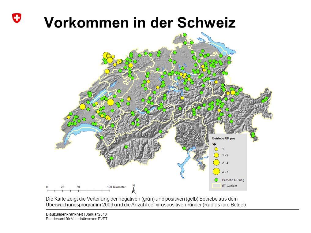 Blauzungenkrankheit | Januar 2010 Bundesamt für Veterinärwesen BVET Vorkommen in der Schweiz Die Karte zeigt die Verteilung der negativen (grün) und positiven (gelb) Betriebe aus dem Überwachungsprogramm 2009 und die Anzahl der viruspositiven Rinder (Radius) pro Betrieb.