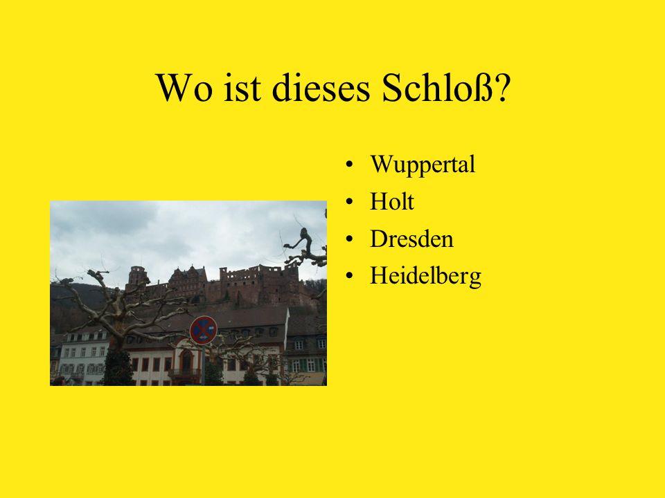 Wo ist dieses Schloß Wuppertal Holt Dresden Heidelberg