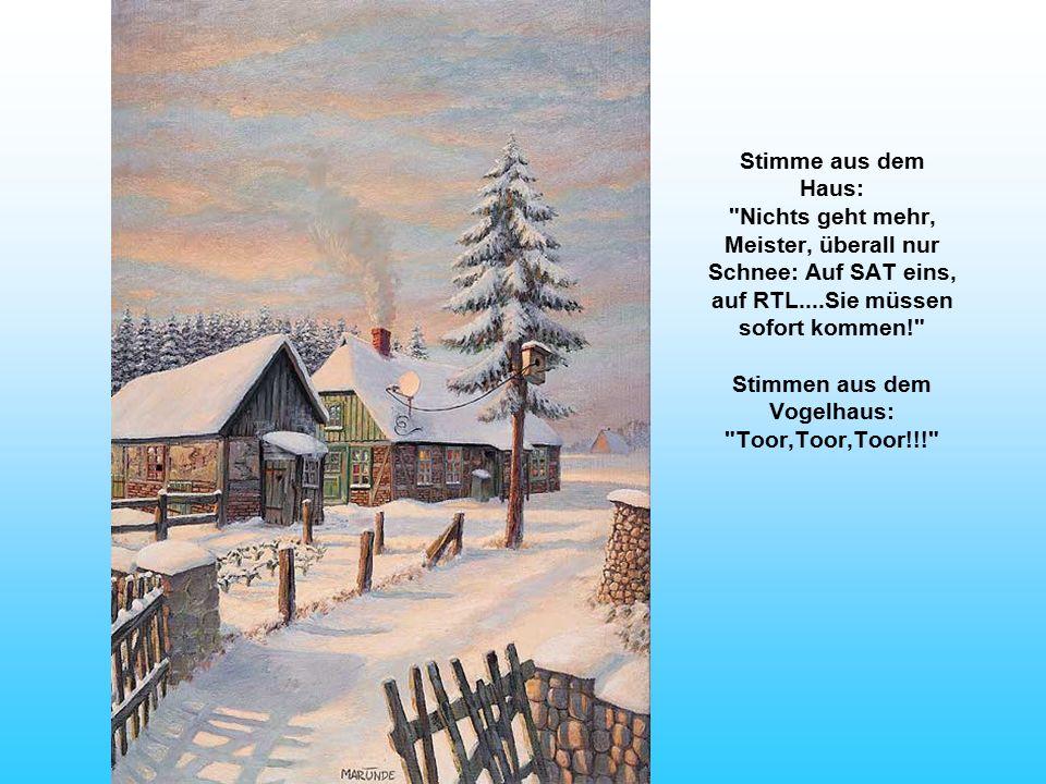 Stimme aus dem Haus: Nichts geht mehr, Meister, überall nur Schnee: Auf SAT eins, auf RTL....Sie müssen sofort kommen! Stimmen aus dem Vogelhaus: Toor,Toor,Toor!!!