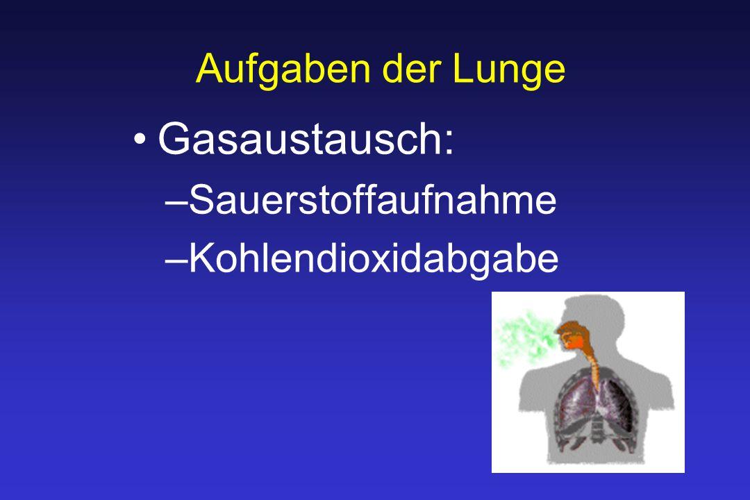 Aufgaben der Lunge Gasaustausch: –Sauerstoffaufnahme –Kohlendioxidabgabe