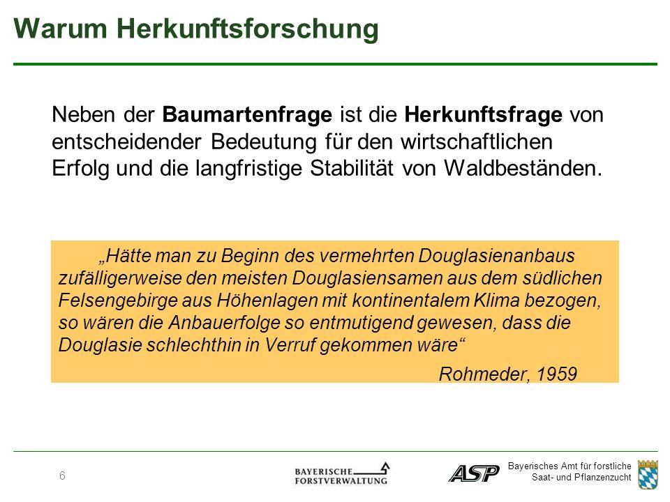 Bayerisches Amt für forstliche Saat- und Pflanzenzucht 17 Heimische Baumarten - Buche
