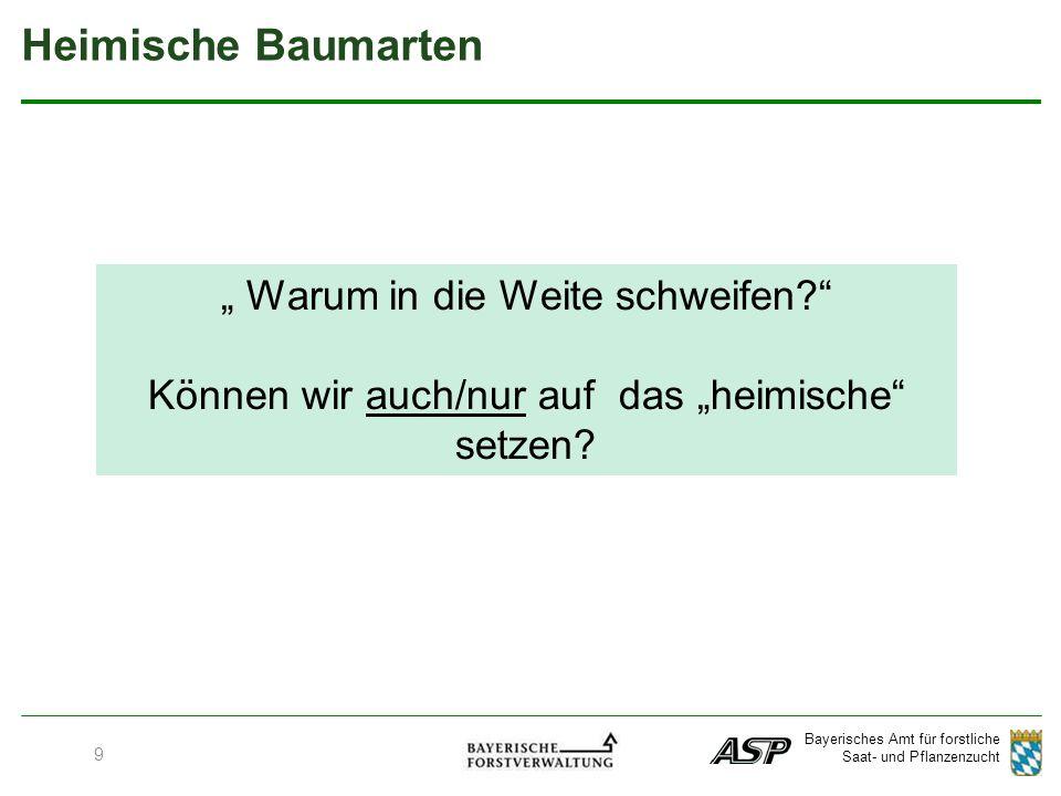 """Bayerisches Amt für forstliche Saat- und Pflanzenzucht 9 Heimische Baumarten """" Warum in die Weite schweifen? Können wir auch/nur auf das """"heimische setzen?"""