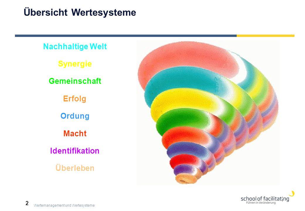 Wertemanagement und Wertesysteme 2 Macht Synergie Identifikation Ordung Nachhaltige Welt Gemeinschaft Erfolg Überleben  Übersicht Wertesysteme