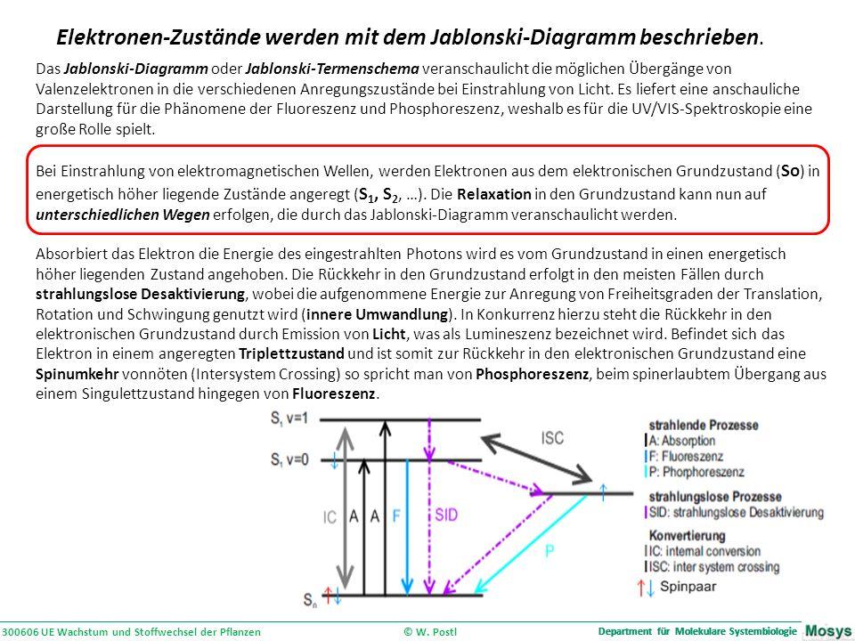 Department für Molekulare Systembiologie 300606 UE Wachstum und Stoffwechsel der Pflanzen © W.