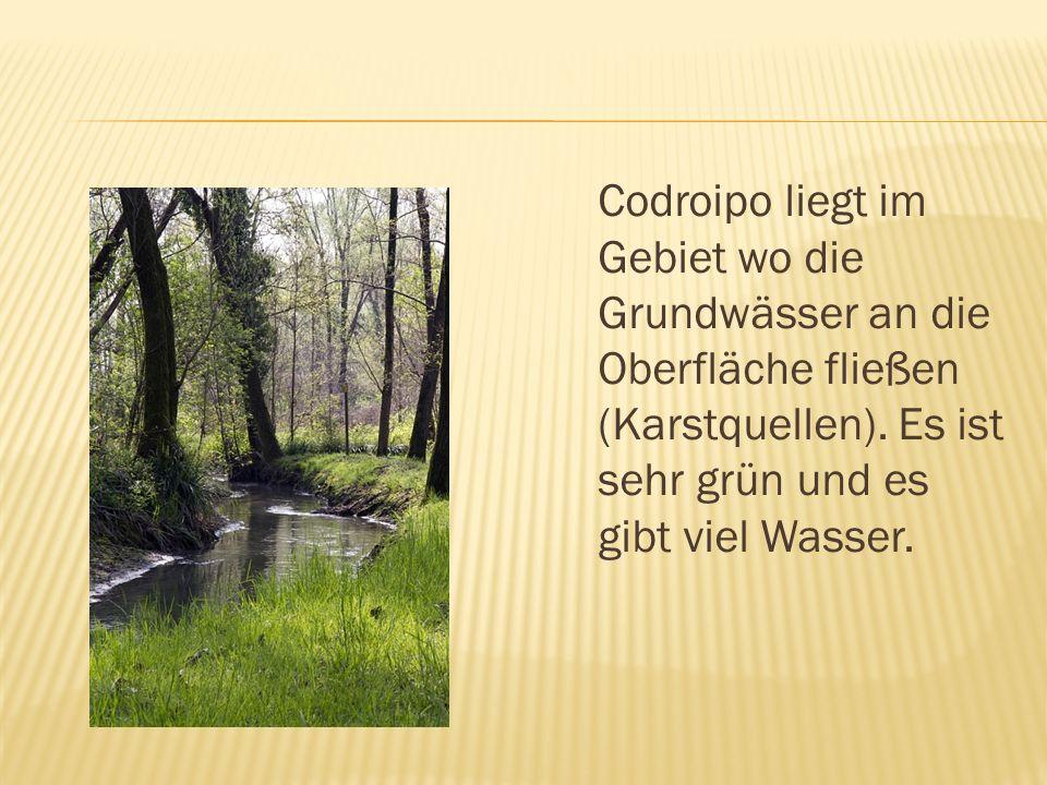 Codroipo liegt im Gebiet wo die Grundwässer an die Oberfläche fließen (Karstquellen).
