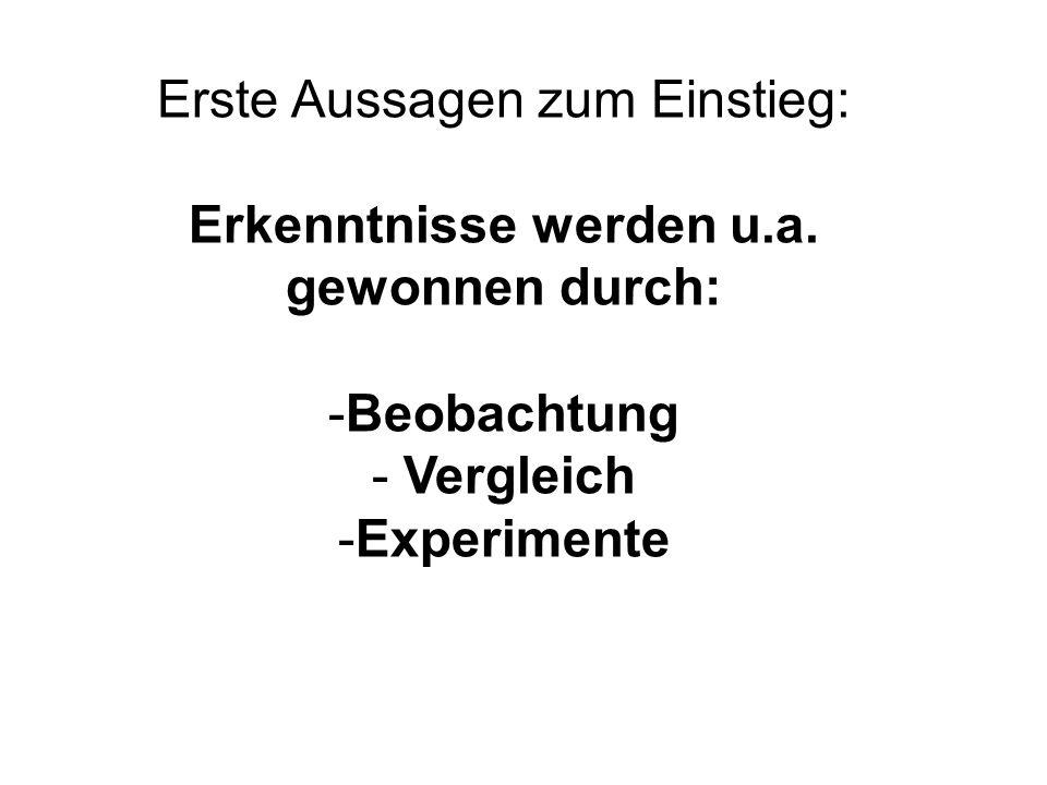 Quelle: Brigitte Geldermann bfz Bildungsforschung