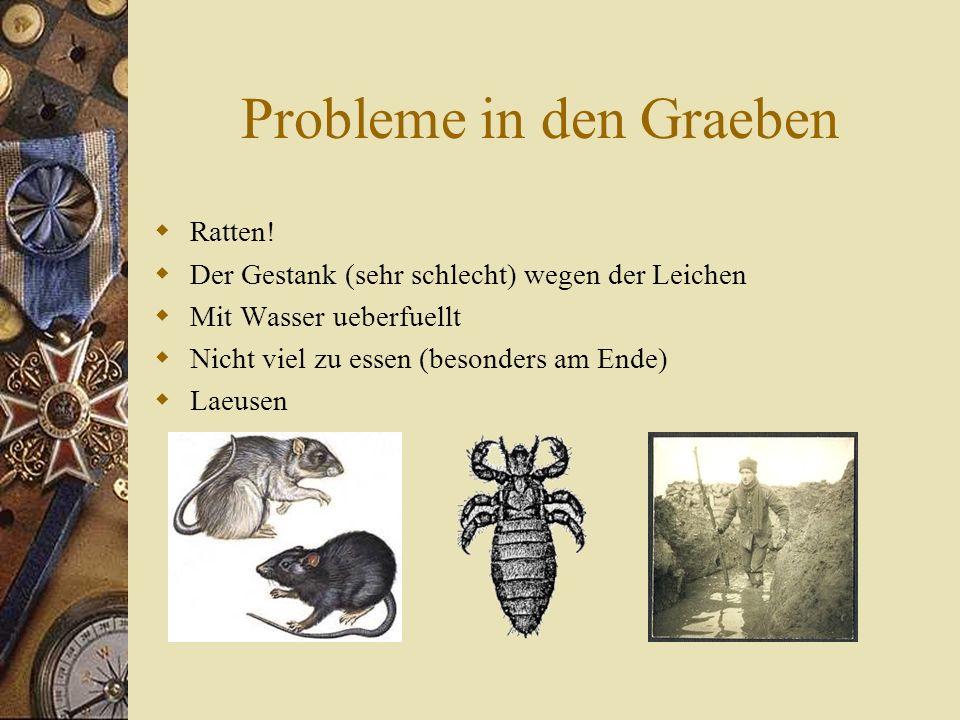 Probleme in den Graeben  Ratten.