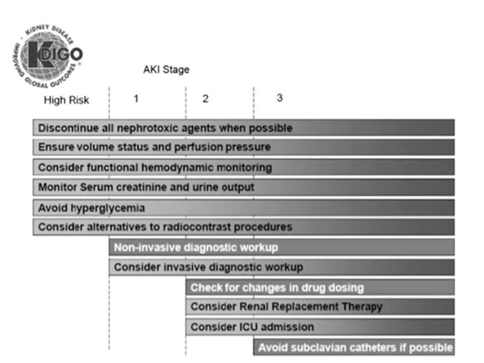 Praxis für Nierenerkrankungen und Diabetes Bochum Stadienangepasste Behandlung des akuten Nierenversagens KDIGO 2012