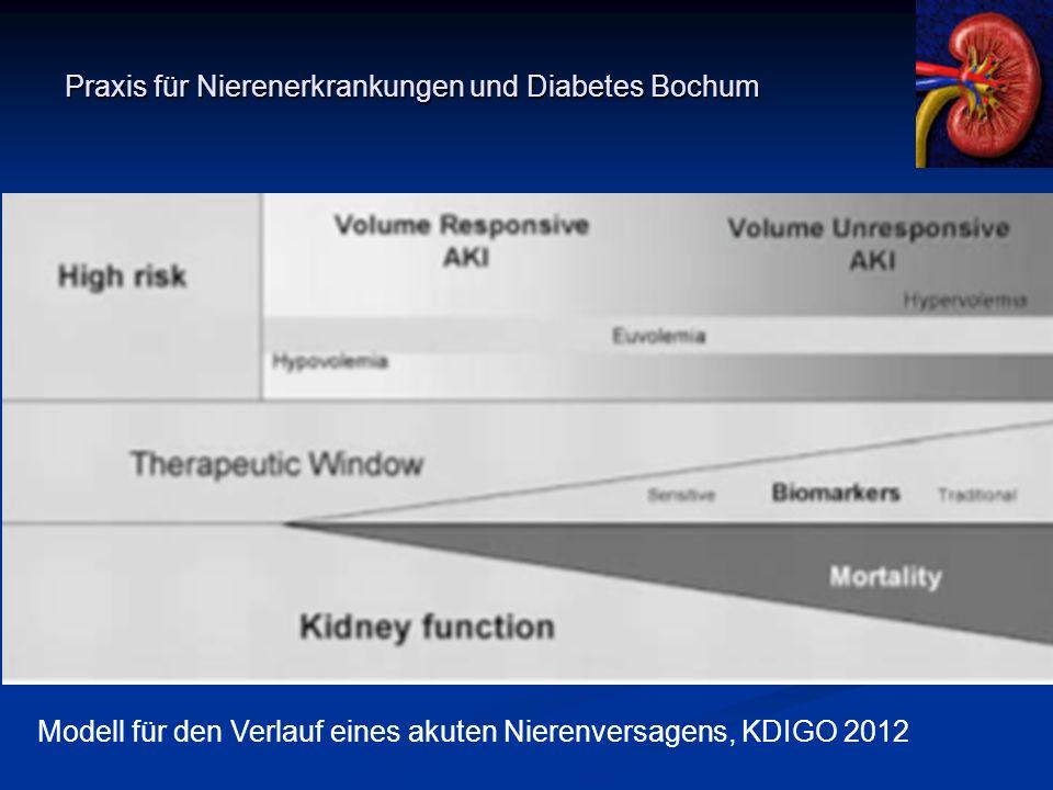 Praxis für Nierenerkrankungen und Diabetes Bochum Vielen Dank für Ihre Aufmerksamkeit Modell für den Verlauf eines akuten Nierenversagens, KDIGO 2012