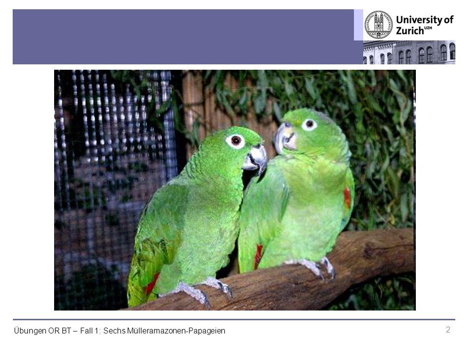 Übungen OR BT – Fall 1: Sechs Mülleramazonen-Papageien 2