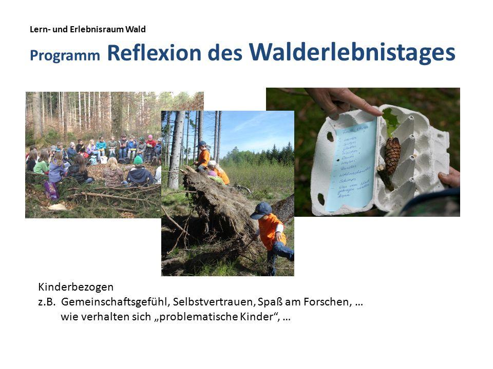 Lern- und Erlebnisraum Wald Programm Reflexion des Walderlebnistages Kinderbezogen z.B.